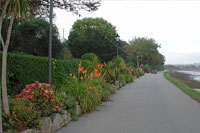 George V Memorial Walk Image